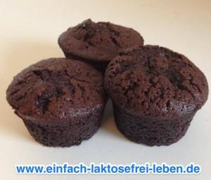 Kakaomuffins, laktosefrei, glutenfrei